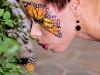 butterfly_800