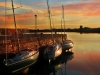 masts_in_the_sun